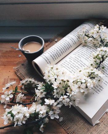 9358bf35d6f4ab15bb7f0e5970e61d6e--book-flowers-coffee-and-flowers